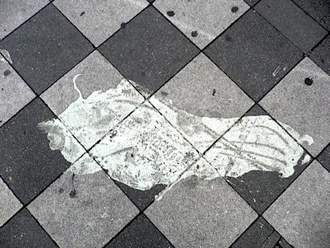 fossil-klein.jpg